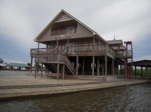 Land For Sale In Tangipahoa Parish Louisiana Texas Land