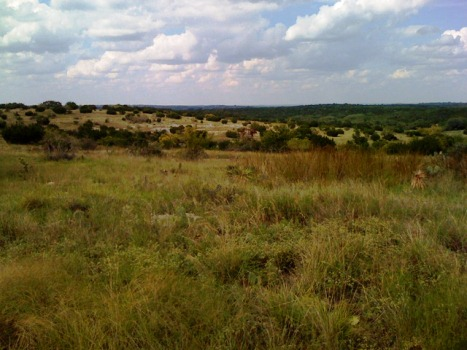 Land+For+Sale