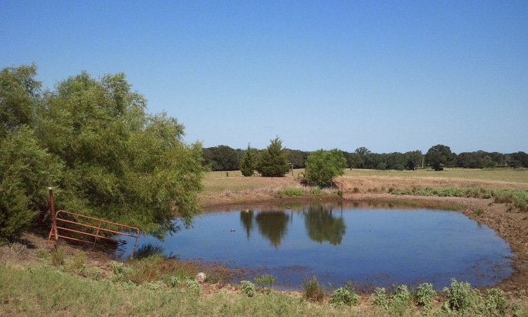 Fishing Property For Sale In Texas